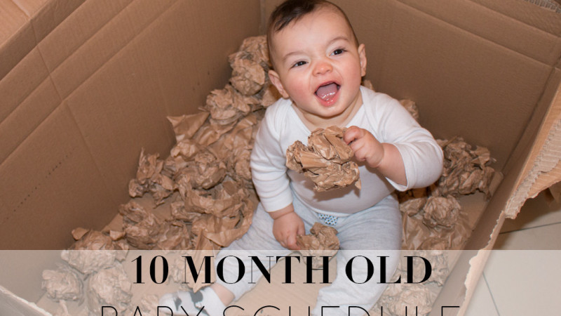 10 Month Old Baby Schedule and Routine